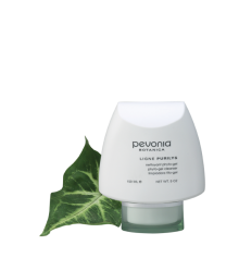 Phyto Gel Cleanser